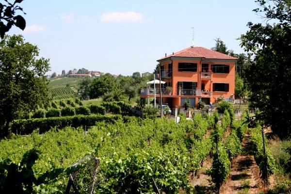 Wijngaard en villa in de Oltrepo Pavese