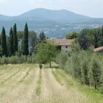 boerderij Toscane