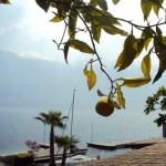Gardameer-Italië