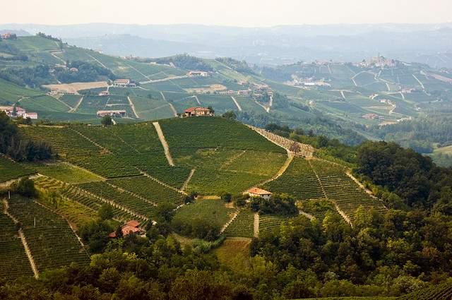 Moscato d'Asti Italiaanse wijn