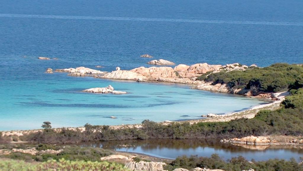 Asinara bij Sardinië