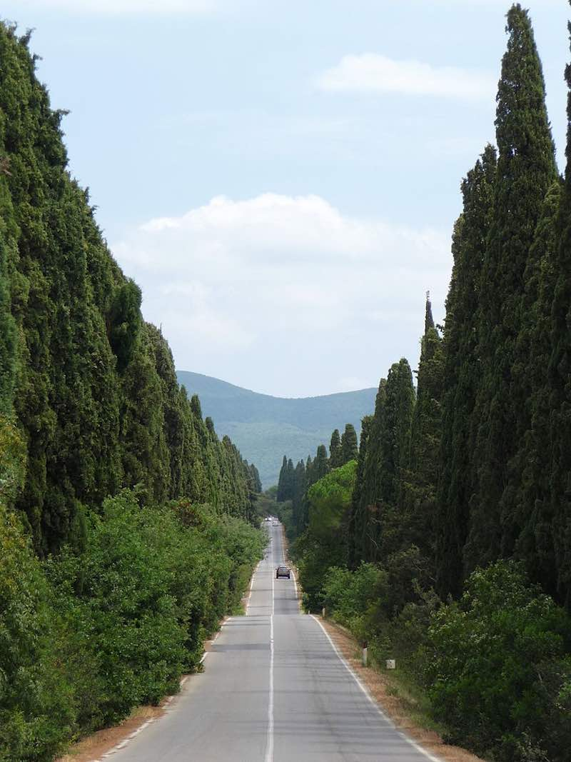 De Viale dei Cipressi bij Bolgheri