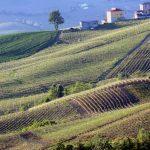 7 onweerstaanbare redenen om de Oltrepò Pavese te komen ontdekken!