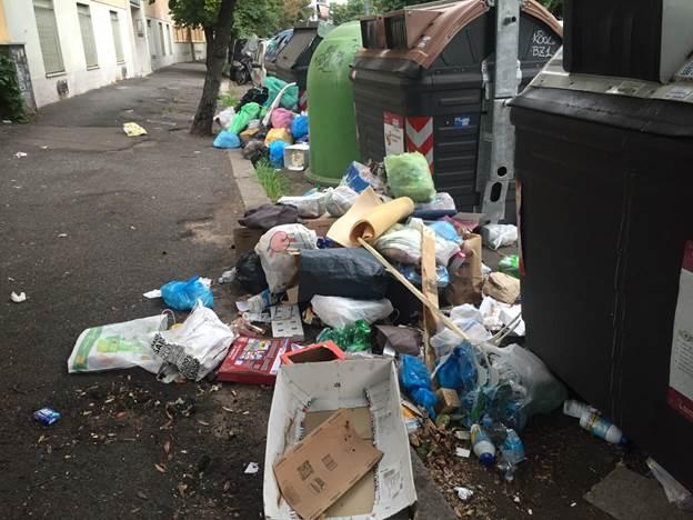 invasie wilde zwijnen in rome