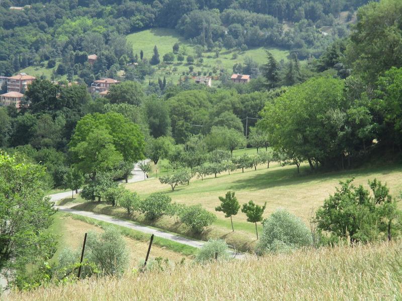 De groene kant van Bologna