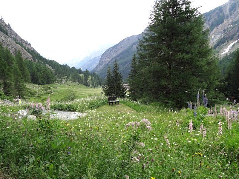 Geweldige natuur in natuurpark Gran Paradiso