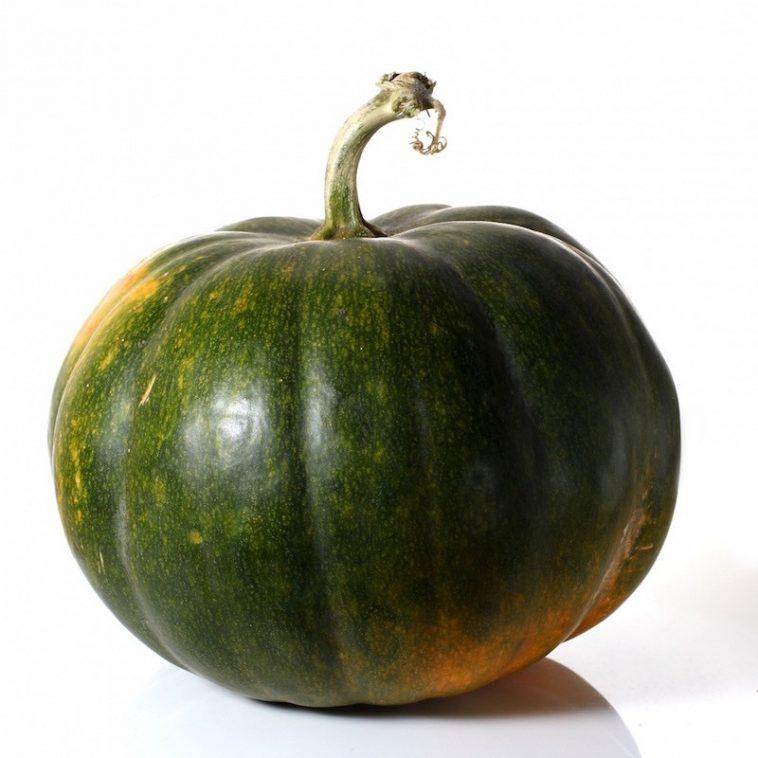 italiaans recept - herfstpasta met groene pompoen