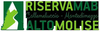 Montedimezzo