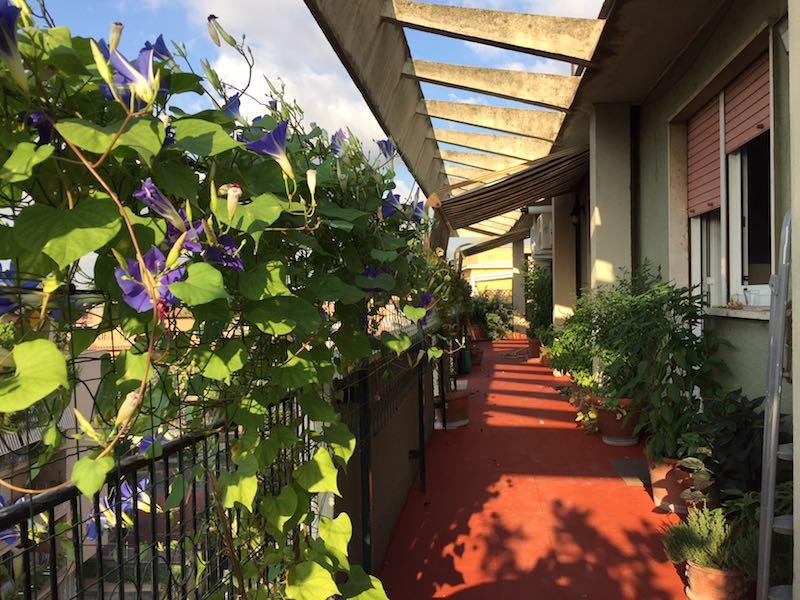 Het terras van ons huis in Rome (inmiddels weer schoongeveegd)