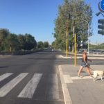 Rome in augustus: lege straten