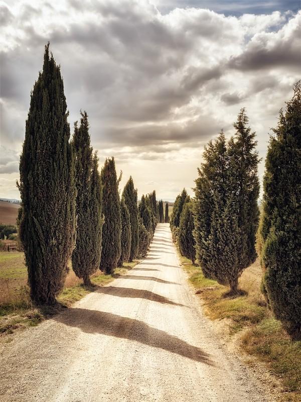 Zie je jezelf al rijden door het Toscaanse landschap?