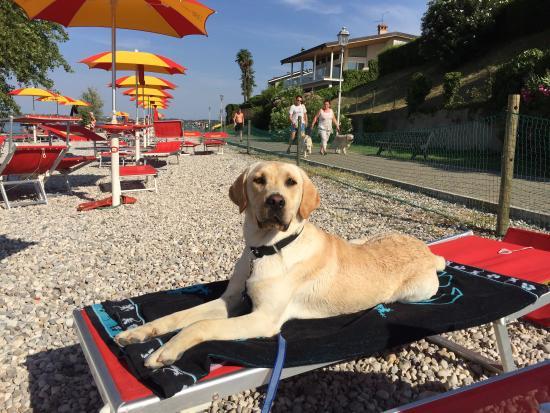 Met je hond naar het strand in Peschiera del Garda
