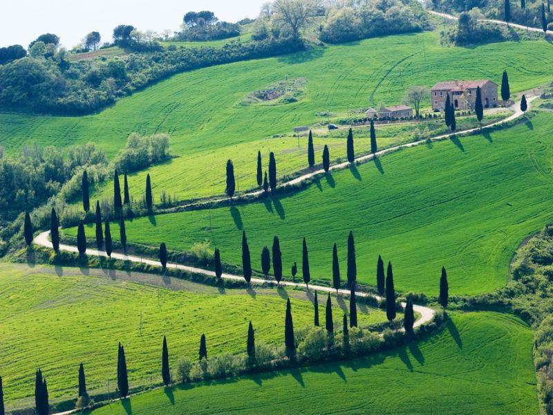 De slinderende weg met de cipressen in Toscane
