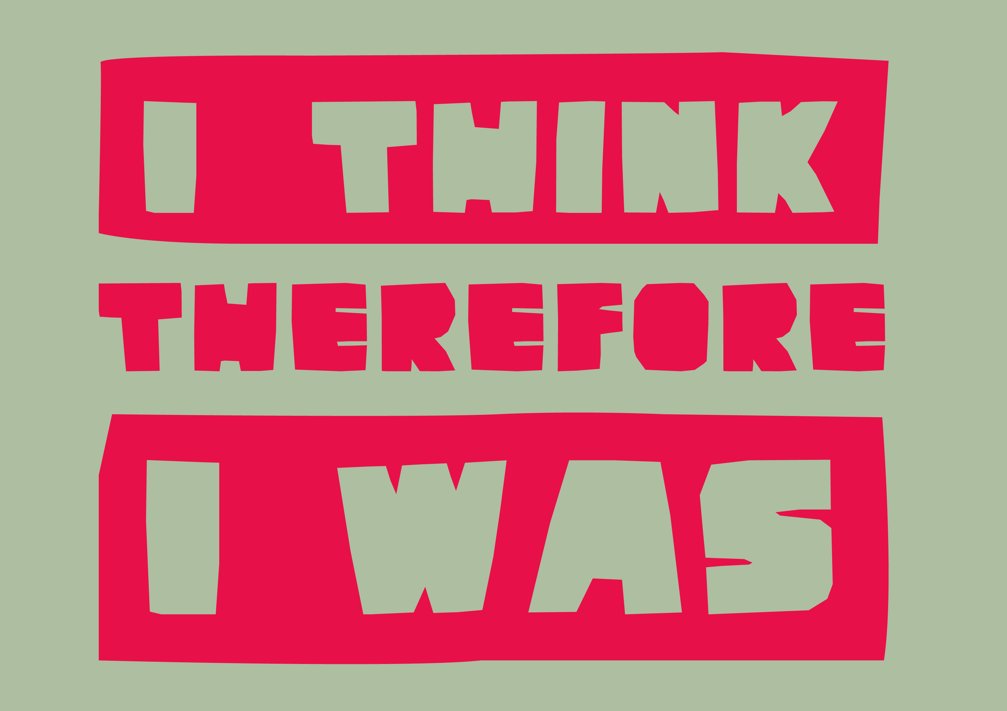 I think therefore I was