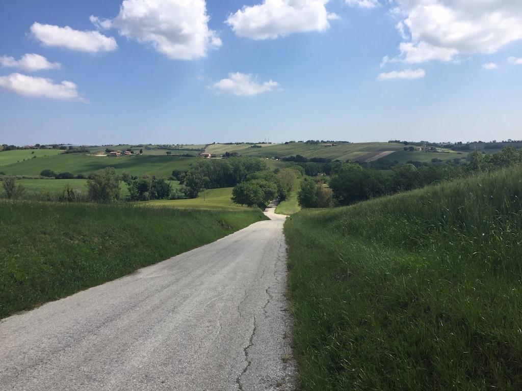 Een mooie route door De Marken