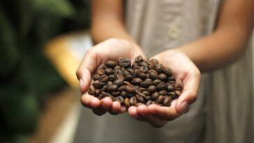 Italiaanse koffiebonen